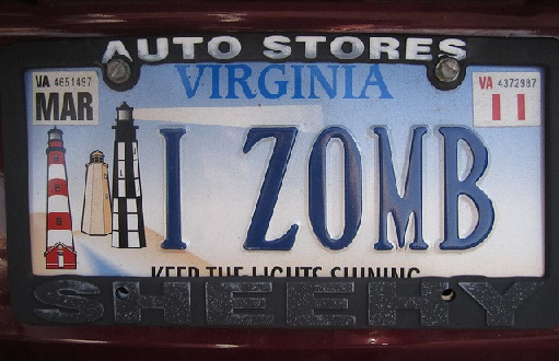 Zombie License Plate 8